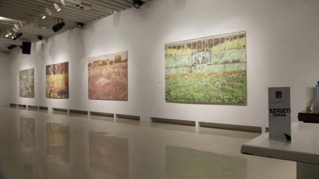 Szigeti Tamás Natúr című kiállításának megnyitója
